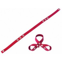 Redline 8 Style Ball Divider-Red Oiltan
